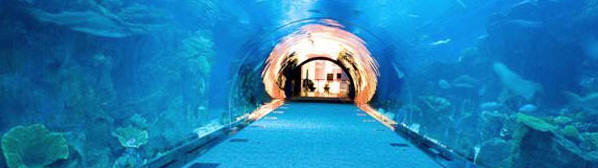 Aquarium-Tank-_zpsdtcizqvh