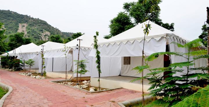 rainforest-glam-camp