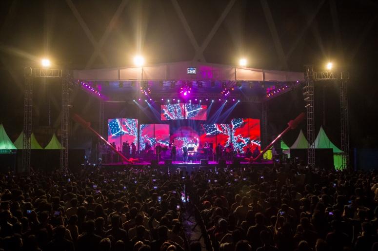 delhiites-enjoy-music-at-riders-music-festival